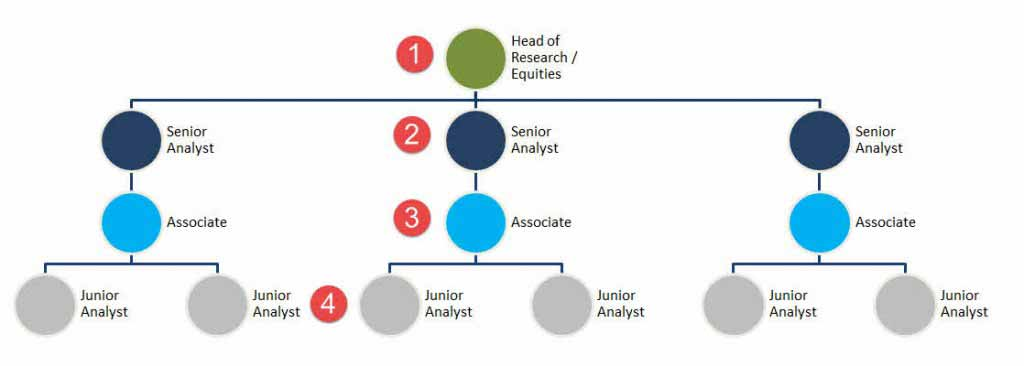 Equity Reserach Hierarchy