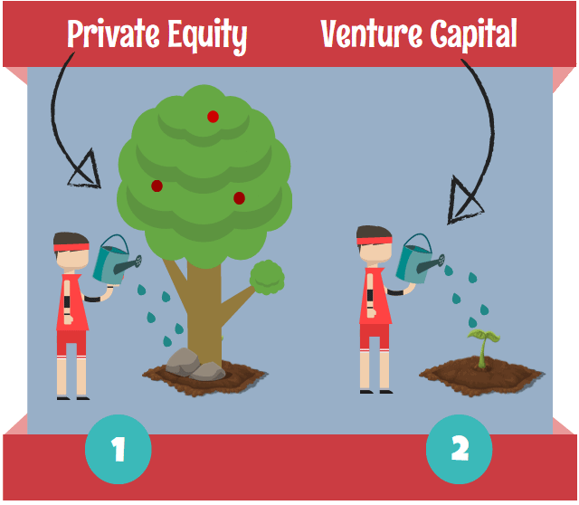 Private equity vs venture Capital Analogy
