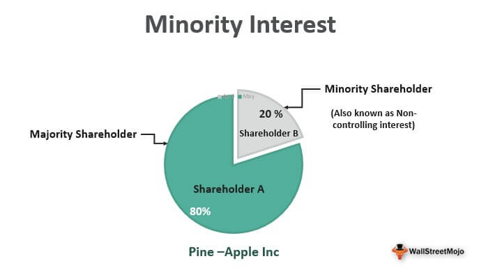 Minority Interest