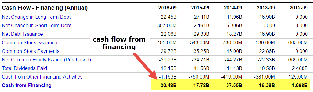 Cash Flow From Financing Apple