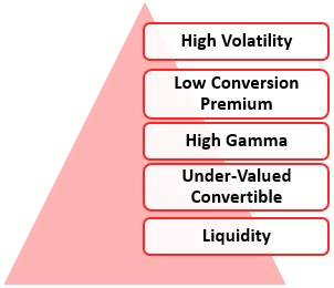 Convertible Arbitrage Fund Manager's