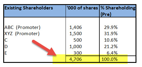 Term Sheet - Shareholding Pattern