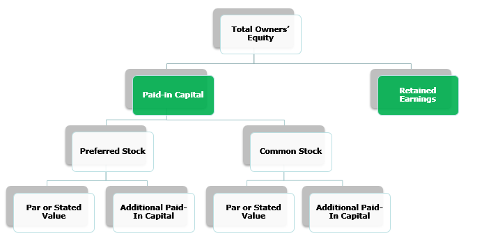Balance Sheet - Shareholder's Equity