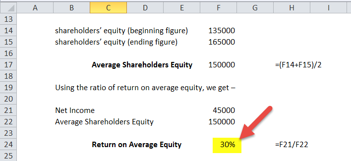 Return on Average Equity in excel