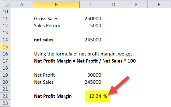 Net Profit Margin Formula in Excel