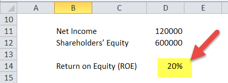 Return on Equity (ROE) in Excel