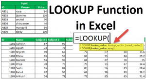 LOOKUP Excel Function