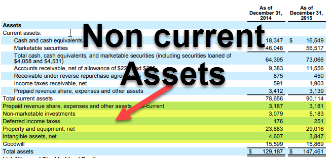 Non Current Assets