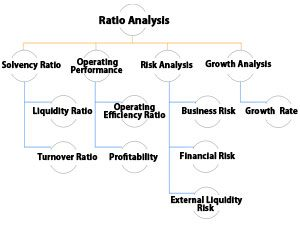 Ratio Analysis Framework