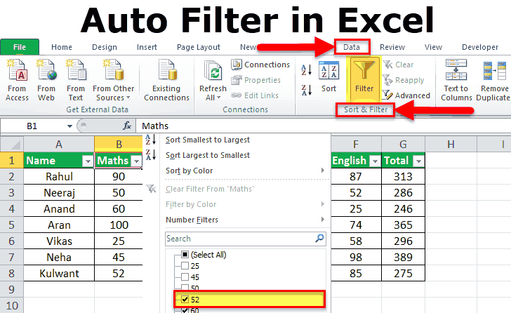Auto Filter in Excel
