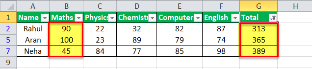 Auto Filter in Excel Example 2-4