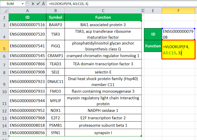 VLOOKUP Function in Excel Example 1-1