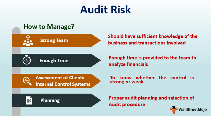 Audit-Risk