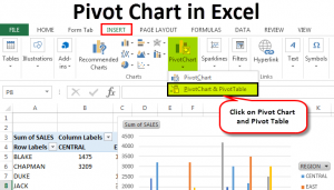 Pivot Chart in Excel