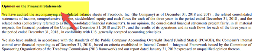 Audit Report Example - Facebook 1