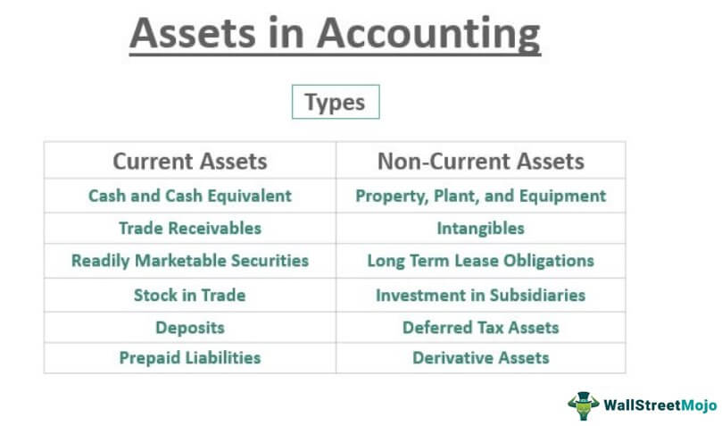 Assets in Accounting