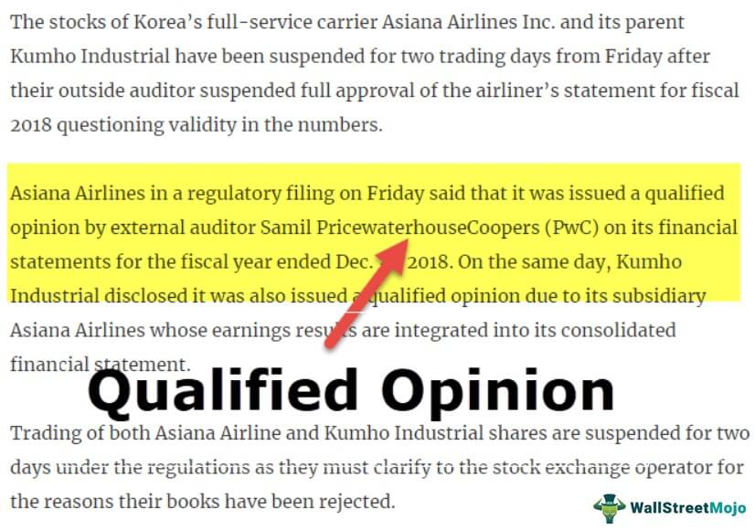 Audit Report Qualified Opinion