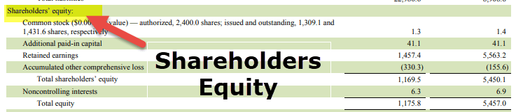 Component of Financial Statements - Balance Sheeet Shareholders Equity