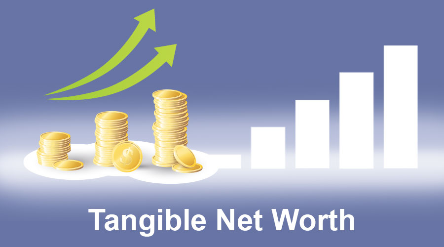 Tangible-Net-Worth