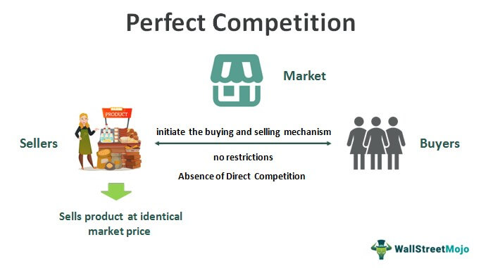 Perfect-Competition