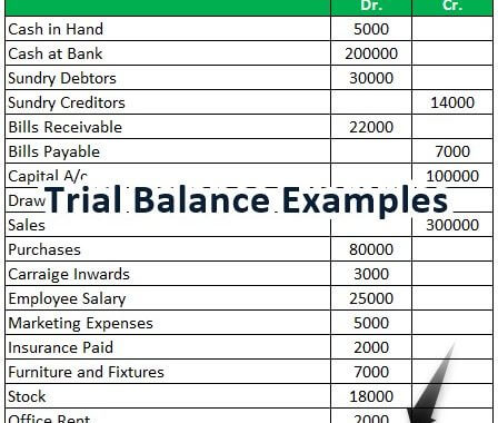 Trial Balance Examples Real Life Example Of Trial Balance In Accounting