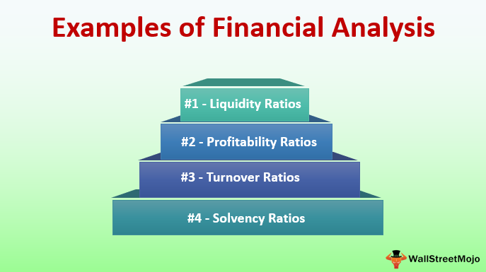 Examples of Financial Analysis