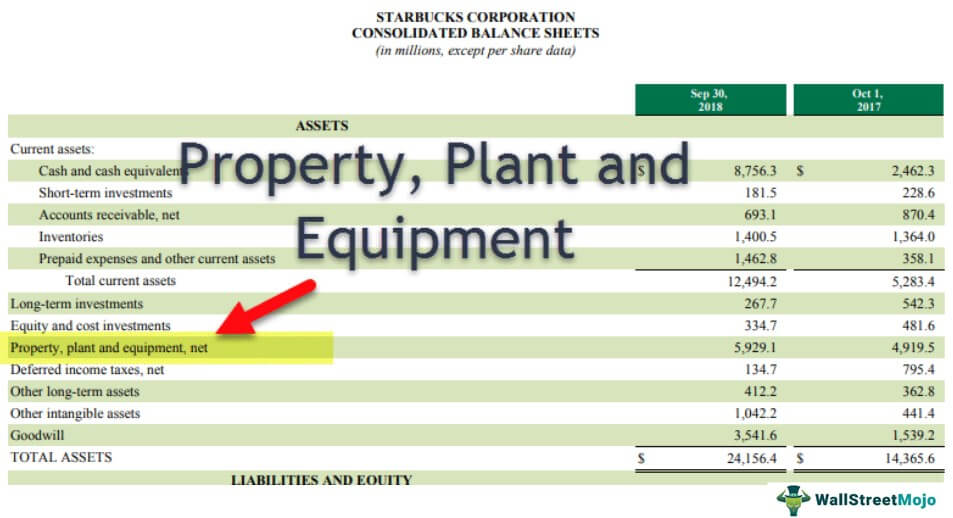 Property Plant and Equipment (PP&E)