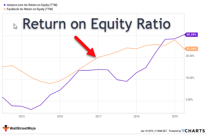 Return on Equity Ratio