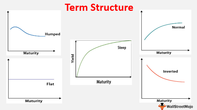 Term Structure 1