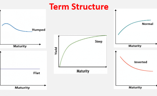 Term structure.1png