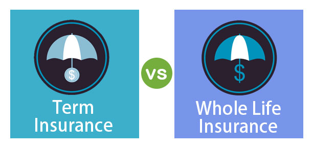 Term-vs-Whole-Life-Insurance