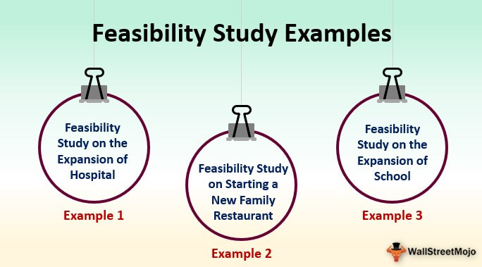 Feasibility Study Examples