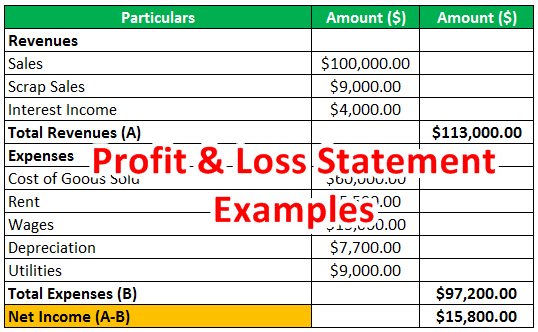 profit and loss statement examples
