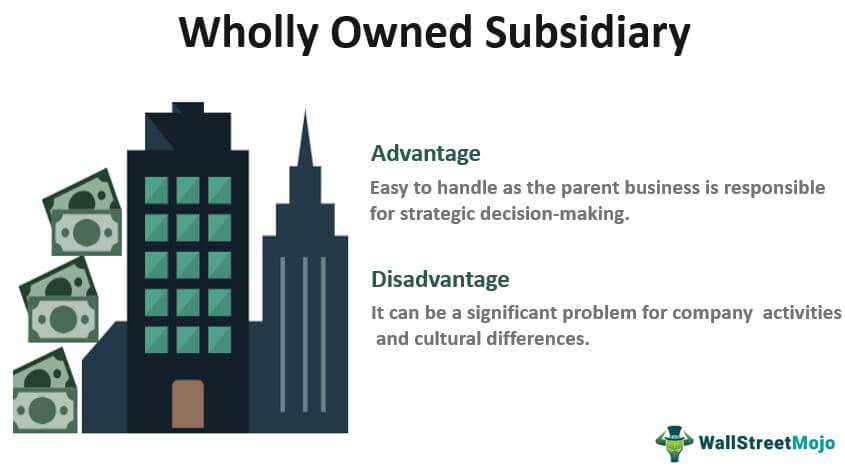 Wholly Owned-Subsidiary