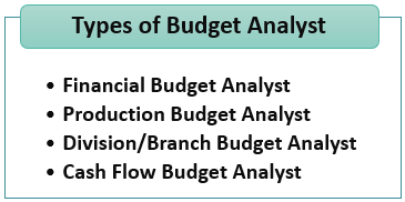 Types of Budget Analyst