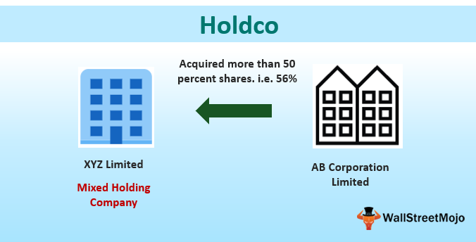 Holdco
