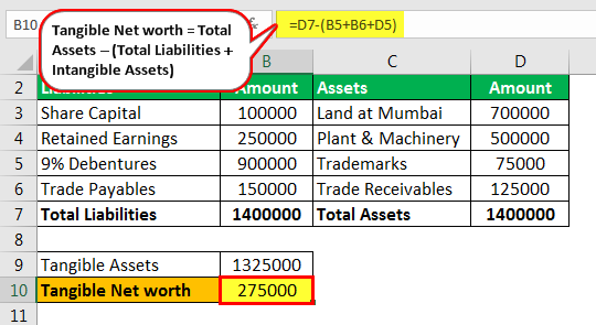 Tangible Net Worth Formula - Example 1.3