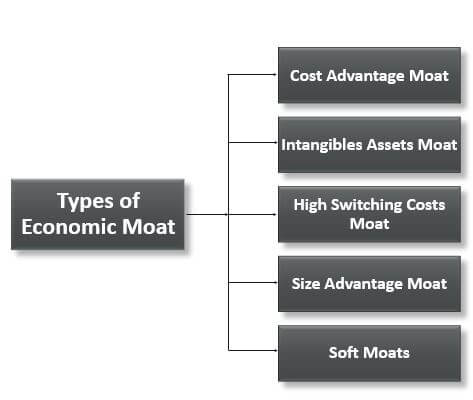 Top 5 Types of the Economic Moat