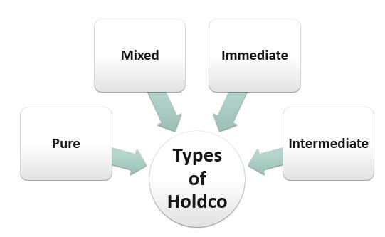 Types of Holdco