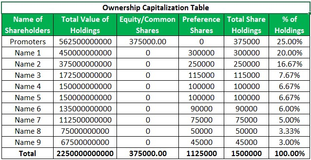 Capitalization Table Example 1.1