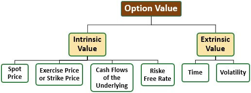 Components of Extrinsic Value