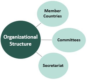 Organizational Structure of OECD