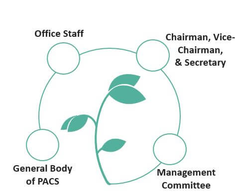 Organizational Structure of PACS