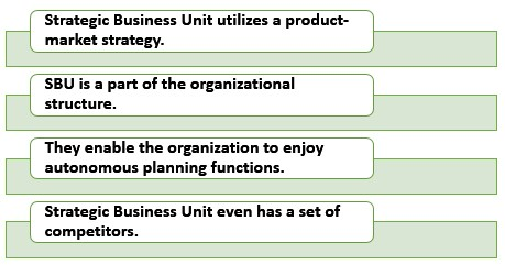 Characteristics of SBU(Strategic Business Unit)