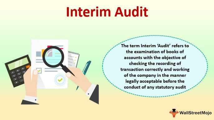 Interim Audit