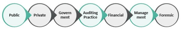 Types of Accounting Practice