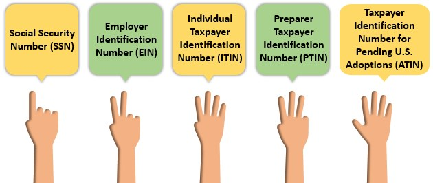 Types of TIN(taxpayer identification number)