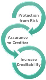 Importance of Credit Insurance