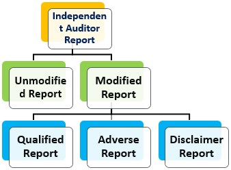 Independent Auditor Report - Types