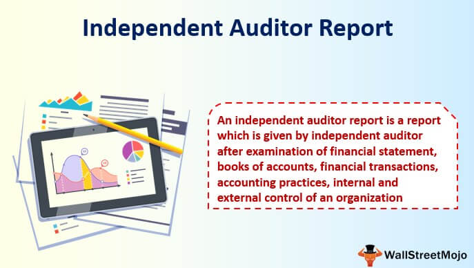Independent Auditor Report
